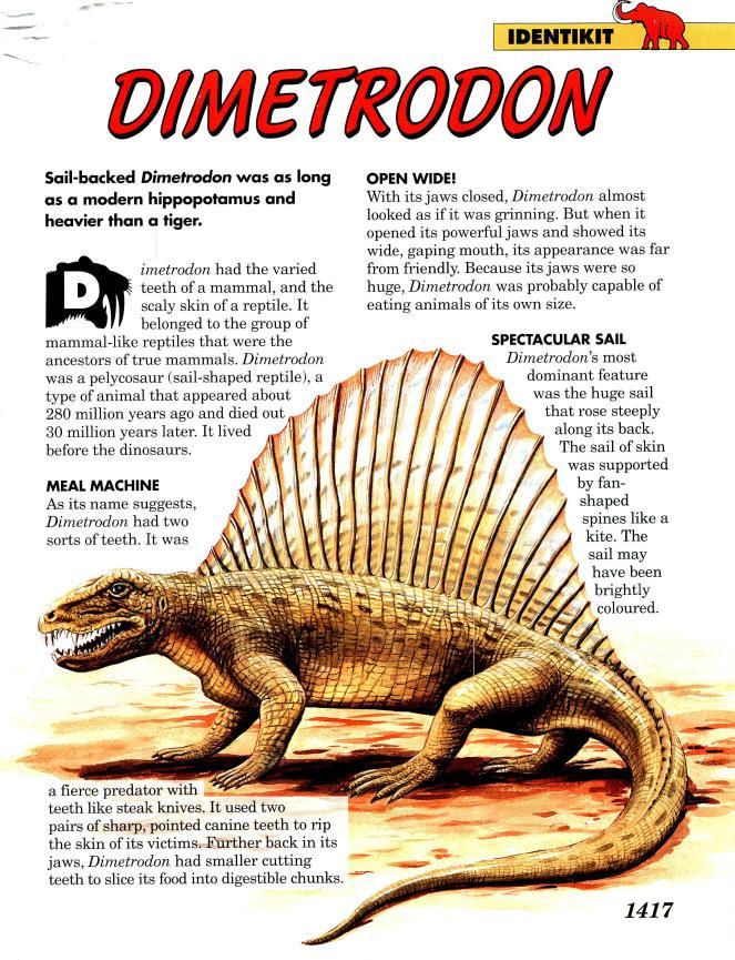 Descubre los gigantes del mundo prehistórico! – The R Lounge