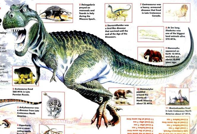 rex10